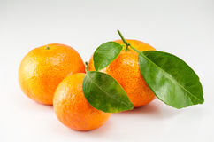 Orange with green leaf Royalty Free Stock Photos