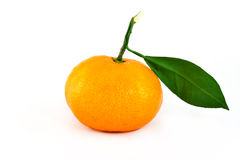 Orange and green leaf Stock Photos