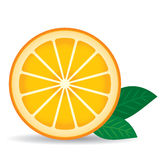 Orange with green leaves on a white background. Vector. Illustration Royalty Free Stock Image