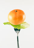 Orange and green vegetables on the fork. Royalty Free Stock Photo