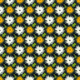 Orange green and white flowers on a dark background seamless pattern Stock Photos