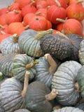 Orange and grey pumpkins Stock Image