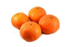 Orange group Stock Image