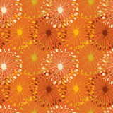 Orange grunge radial pattern. Decorative floral se Royalty Free Stock Photos