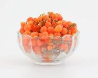 Orange gumberry Royalty Free Stock Photos