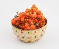 Orange gumberry Stock Photo