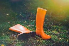 Orange Gummistiefel im Wald Lizenzfreie Stockfotografie