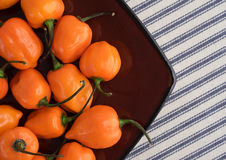 Orange habanero peppers in a dish on a table cloth Royalty Free Stock Photos