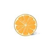 Orange half cut circle citrus fruit color sketch Royalty Free Stock Image