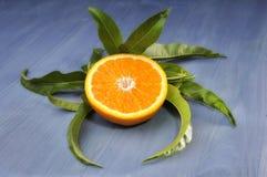 Orange half with leaves Stock Photo
