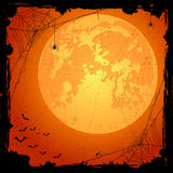 Orange Halloween background with spiders and bats Royalty Free Stock Images