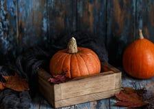 Orange Halloween-Kürbise auf hölzernem Hintergrund Herbstzusammensetzung mit Kürbisen Ein grimmiger Minireaper, der eine Sense an lizenzfreie stockfotografie