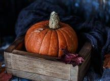 Orange Halloween-Kürbise auf hölzernem Hintergrund Herbstzusammensetzung mit Kürbisen Ein grimmiger Minireaper, der eine Sense an stockbilder