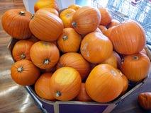 Orange Halloween-Kürbise im Shop Stockfotos