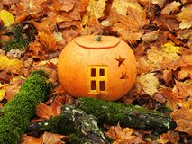 Free Orange Halloween Pumpkin Royalty Free Stock Photos - 102734038