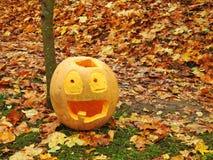 Orange halloween pumpkin Stock Photography