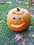 Orange halloween pumpkin Royalty Free Stock Photo