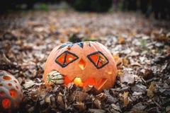 Free Orange Halloween Pumpkin. Holes, Holidays. Stock Photo - 177827740