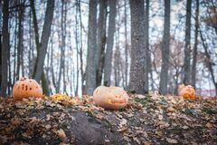 Free Orange Halloween Pumpkin. Holes, Holidays. Stock Photo - 177827970