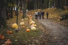 Free Orange Halloween Pumpkin. Holes, Holidays. Royalty Free Stock Photo - 177828705