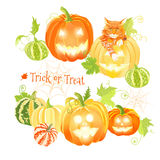 Orange Halloween pumpkins and cat vector design objects. All ele Stock Images