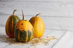 Orange halloween pumpor på vita plankor Arkivfoton