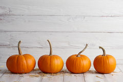 Orange halloween pumpor på vita plankor Arkivbilder