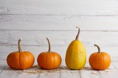 Orange halloween pumpor på vita plankor Arkivfoto