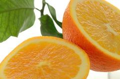 Orange halves, close-up. Isolated on white background royalty free stock images