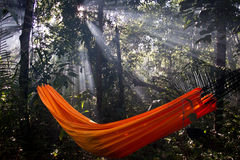An orange hammock in the forest Stock Photos