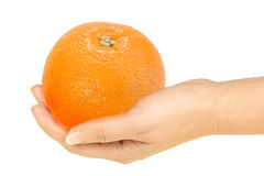 Orange in a hand Stock Image