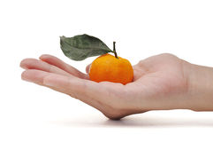 Orange in hand. This ia a Orange in hand inisolated shot royalty free stock photos