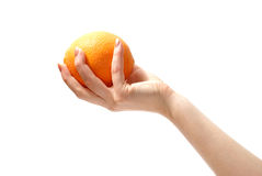 Orange in hand. Tasty sweet orange in graceful woman's hand stock photo