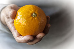 Orange in the hand Royalty Free Stock Photos