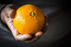 Orange in the hand Stock Image