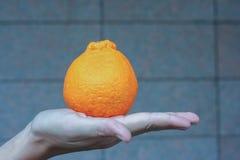 Orange on hand. In closeup Stock Photography