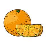 Orange hand isolerade drog frukter Arkivfoton
