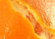 Orange Haut Stockfotografie