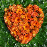 Orange heart Royalty Free Stock Photo