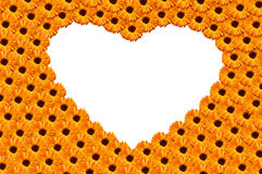 Orange  heart from flowers Stock Image