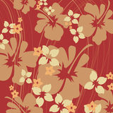 Orange hibiscus. Pattern Stock Photos