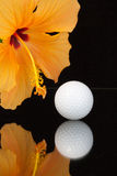 Orange hibiscus flower  and golf ball. On the glass plate Stock Photography