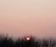 Orange Himmel Lizenzfreies Stockbild