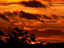 Orange Himmel am Sonnenuntergang Lizenzfreie Stockfotos