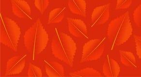 Orange Hintergrund des Herbstes mit Blättern Modernes Muster für Einkaufsverkauf, Promoplakat oder Netzfahne Abbildung Stockbild
