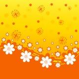 orange Hintergrund mit Gänseblümchen stock abbildung