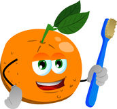 Orange holding tooth brush Stock Photography