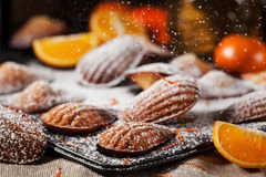Orange and honey madeleines cookies Royalty Free Stock Images
