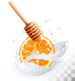 Orange and honey in a milk splash Royalty Free Stock Photo