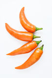Orange hot chili Stock Images